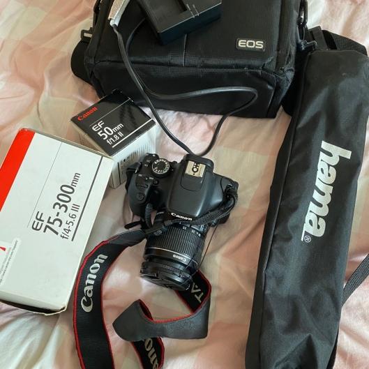 Canon 600D (Rebel T3i / Kiss X5)